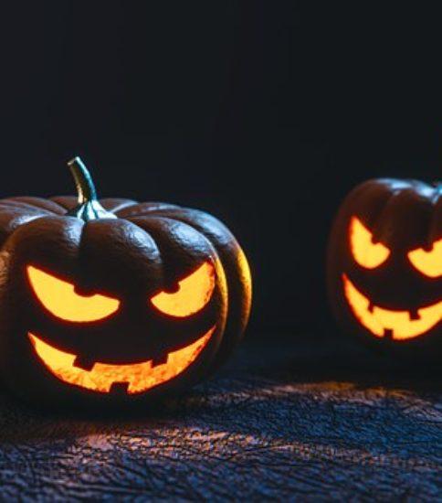 今年もやります!かぼちゃの重さ当て!